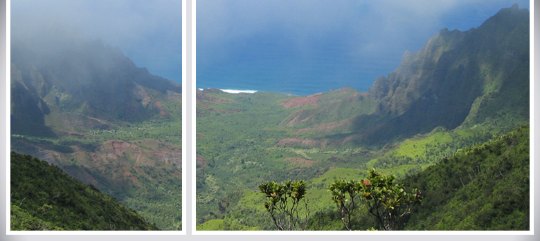 Webfolio for Ami Nacu-Schmidt. View from waimea canyon